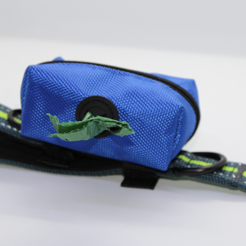 Blue Bag on Leash with Bag