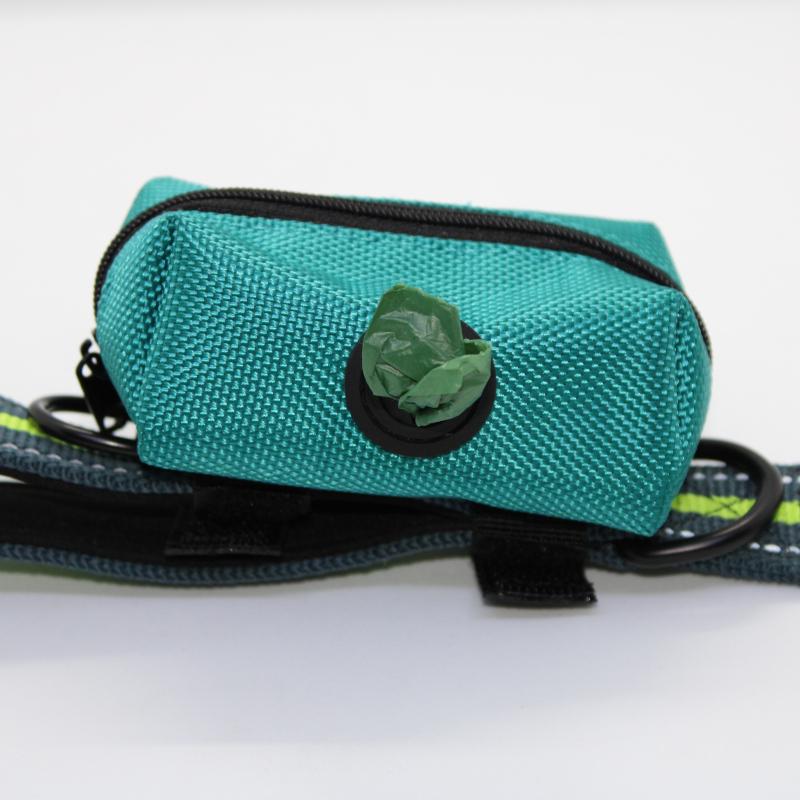 Green Bag on Leash with Bag
